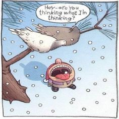 funny birds funny quotes quote winter snow lol funny quote funny quotes humor