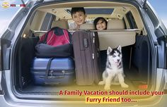 A Family Vacation Should include your Furry Friend too....