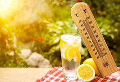 Verão, sol, praia, descanso, pode ser um prato cheio para doenças oportunistas.