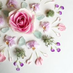 Urban Outfitters - Blog - UO DIY: Floral Collages