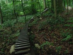 Obstacles for a mountain bike trail!