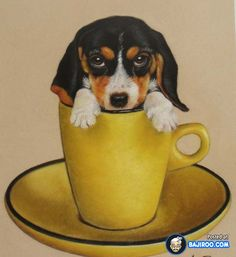 18 Cute Puppies In Cups