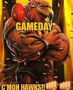 Hawks, Football Team, Joseph, Street Art, Club, Bird, Rock, Animal, Logos