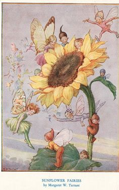 Buy your Sunflower Fairies Vintage Artwork by Vintage Artwork here. Brighten up your girl's room with the Sunflower Fairies Vintage Artwork featuring a slew cheerful fairies. Fairy Dust, Fairy Land, Fairy Tales, Forest Fairy, Arte Fashion, Fairy Pictures, Vintage Fairies, Love Fairy, Beautiful Fairies