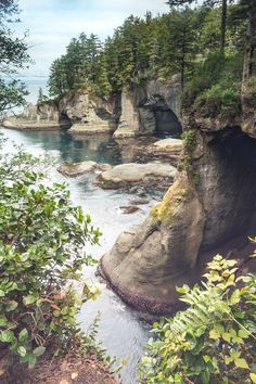 Rock Caves . Cape Flattery . Washington.