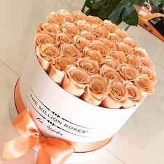 #longlasting#peach#roses Million Roses, Flower Box Gift, Flower Names, Rose Bouquet, Food Design, All The Colors, Flower Power, Planting Flowers, Flower Arrangements