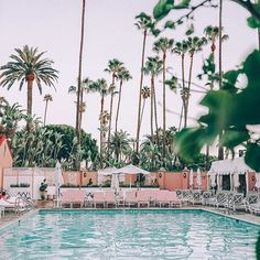 Love this pool    #collageontheroad