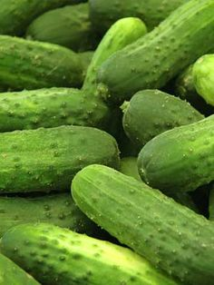 I remember back in the day when this is what a cucumber looked like.not the perfectly engineered ones we get now.these are pickling cucumbers.very small seeds. Green Grass, Go Green, Green Colors, Colours, Fresh Fruits And Vegetables, Fruit And Veg, Green Veggies, World Of Color, Color Of Life