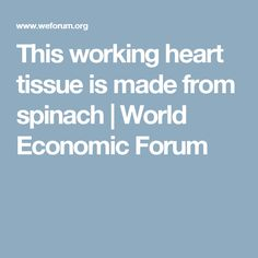 This working heart tissue is made from spinach | World Economic Forum