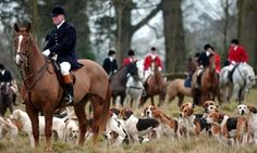 Hunting in West Sussex