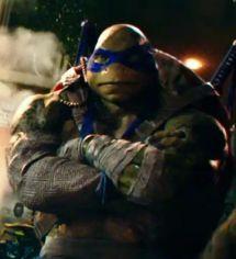 152 Best Tmnt Images Tmnt Turtle Teenage Mutant Ninja Turtles
