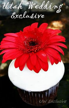 Cupcakes I did for a wedding that was outside in black, red and white theme.