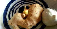 grow ginger garlic
