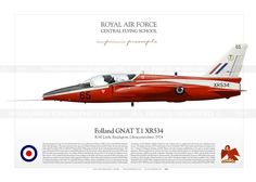 Folland GNAT T.1 RAF IK-21 Folland Gnat, Air Force Aircraft, The Spitfires, War Thunder, Nose Art, Royal Air Force, Aviation Art, Royal Navy, Military Aircraft