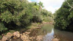 Típica imagen del Valle del Lunarejo, la corriente de agua es de un afluente. Es pleno acuífero Guaraní.