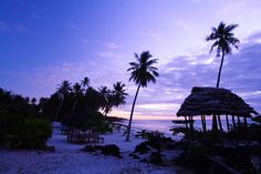 Sleeping in a fale on the beach, falling asleep to the sound of the waves... Savaii, Samoa (not my pic... our fale had sides we closed)