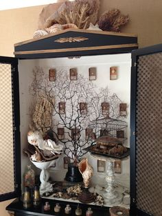 Cabinet of Natural Curiosities… Curiosity Cabinet, Curiosity Shop, Home Interior, Interior Design, Cabinet Of Curiosities, Natural Curiosities, Shell Art, Displaying Collections, Assemblage Art