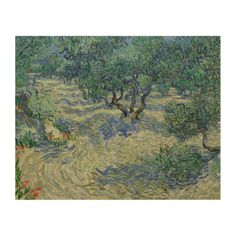Olive Orchard by Vincent Van Gogh #Wood #Canvas #Prints. #vangogh #art #posters #reproductions #panel #fineart #painting #postimpressionism #expressionism #museum #trees
