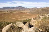 Mexican wines and wineries from Mexico: Do you know the history of Baja's wine region ?