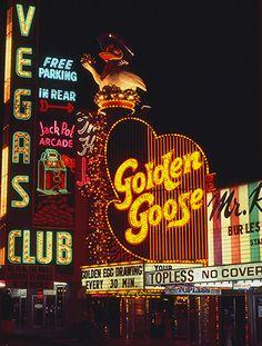 The Golden Goose 1976.
