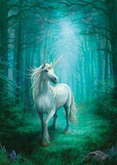 #Forest #unicorn...#Magic #dream #fantasy