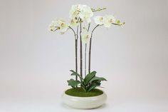 Vaso Redondo Orquídea Branco   A Loja do Gato Preto   #alojadogatopreto   #shoponline