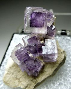 Gemmy Fluorite crystals with purple centers on a limestone matrix. Stoneco Auglaize Quarry, Junction, Ohio, USA