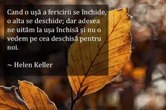 PUTEREA INFINITA A GANDULUI: 32 de citate inspirationale despre Legea Atractiei Rhonda Byrne, Helen Keller, Anne Frank, Optimism, Spiritual Quotes, Einstein, Plant Leaves, Spirituality, Reading