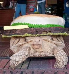 Slow Cookin' Turtle Burger Costume... Coolest Halloween Costume Contest