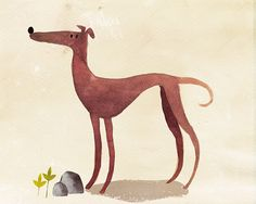 Spanish Greyhound on Behance