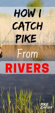 Pike Fishing Tips, Fishing Rigs, Best Fishing, Fly Fishing, Fishing Knots, Alaska Salmon Fishing, Fish Information, Fish Fish