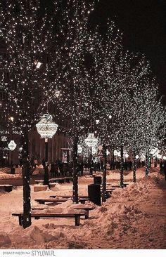 This is really the only thing I like about winter. Pretty, white coverd streets and xmas lights. New York