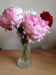 Peonies and rose