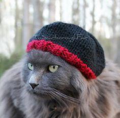 Beanie For Cats - Breaking Bad inspired - Jesse Pinkman Cat Hat - Warm Pet Hat - Winter Cat Hat