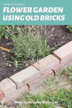 Brick garden edging is one of the best brick garden ideas. If you like brick in the garden flower beds or brick flower bed ideas, you'll love this DIY flower bed border ideas because it's one of the easiest brick DIY projects. If you're looking for brick garden edging DIY or brick in the garden, you'll love this brick flower bed. Whether you need brick flower bed edging or DIY flower bed edging, this brick DIY garden is perfect for a rustic garden ideas. Garden Rack, Garden Hoe, Garden Beds, Flower Bed Borders, Flower Beds, Brick Flower Bed, Brick Garden Edging, Border Ideas