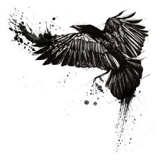 This is a great idea for a tattoo - I would simplify it a bit, though, so that there's more detail of the crow...