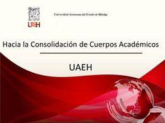 Universidad Autónoma del Estado de Hidalgo Hacia la Consolidación de Cuerpos Académicos UAEH 1.>