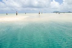 To be surrounded by crystal clear water on the Kaneohe Bay Sandbar in Kaneohe, Hawaii.