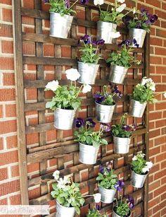 Plante-herbe-aromatique-idee-decoration-diy-do-it-yourself-cuisine-balcon-mur-vegetal