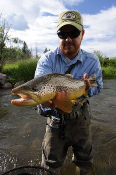 """Awesome 20""""+ Utah brown trout from a small stream."""