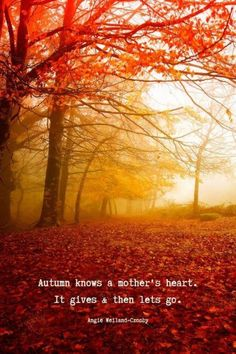 "Beautiful Autumn & Fall Quotes | Inspirational Fall Quotes | Motherhood Quote | Nature Photography of autumn falling in red leaves | ""Autumn knows a mother's heart. It gives and then lets go."" Angie Weiland-Crosby #quotes #autumnquotes #fallquotes #inspirationalquotes #fall #momlife #autumn #red #leaves #trees #blogging #autumn #soul #wellbeing #creativity #angieweilandcrosby #momsoulsoothers Magic Quotes, Soul Quotes, Nature Quotes, Forest Quotes, Leaf Quotes, Season Quotes, Deep Autumn, Autumn Fall, Winter Quotes"