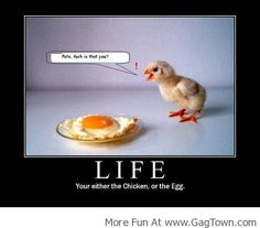 You Are Either The Chicken or The Egg! - GagTown