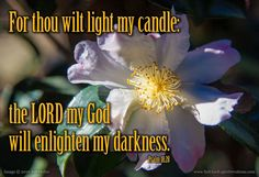 For thou wilt light my candle: the LORD my God will enlighten my darkness. --Psalm 18:28 KJV    http://ift.tt/2dlIsJq  #Bible #inspirational #Psalms