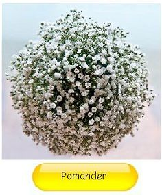 Learn how to make cool baby's breath decorations for your wedding, including bouquets, pew decor and reception decorations.