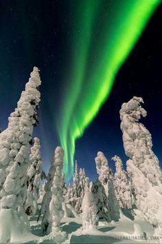 Lappland  (Finland) last year.... God I miss winter