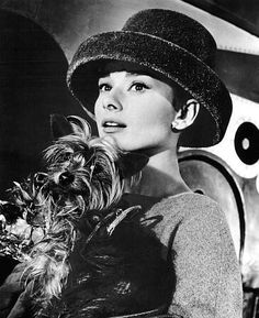Audrey Hepburn and Yorkie
