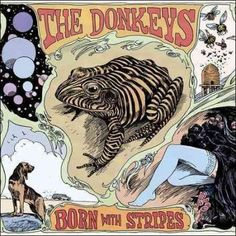 Donkeys - Born with Stripes