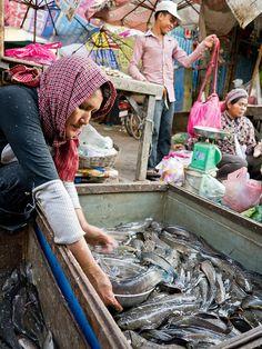 fish at the market, Siem Reap, Cambodia. Photo: Creative Vaccuum
