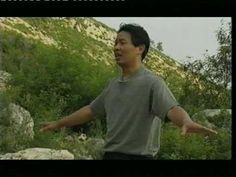 Master Lam Kam Chuen Free Qigong Videos   Qigong Healing Arts