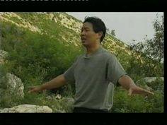 Basic Qigong - Zhan zhuang (站桩) day 8 - YouTube